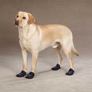 uk pugz uggs for dogs
