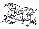 Caterpillar Coloring Pages Insect Printable Realistic Easy Pdf Titan Posted Onlycoloringpages sketch template