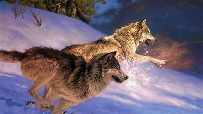 Wolf Wallpapers Snow Attack Wolves Animal Running