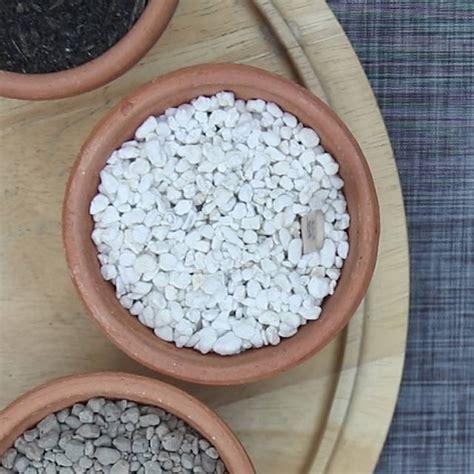 สูตรผสมดินสำหรับปลูก กระบองเพชร หรือแคคตัส-บ้านและสวน