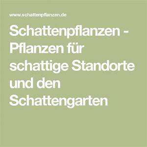 Pflanzen Für Schattige Standorte : 45 best garten images on pinterest backyard ideas garden ideas and vegetable garden ~ Markanthonyermac.com Haus und Dekorationen