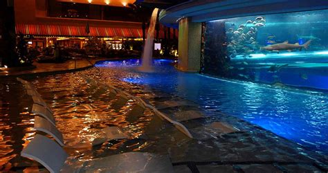 adult pool bar golden nugget las vegas