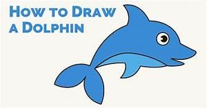 100+ [ How To Draw A Dolphin ] | How To Draw A Dolphin ...