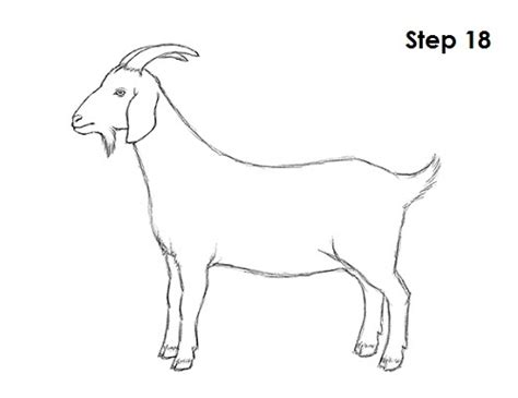 How To Draw A Goat Flow Chart In Excel Youtube Contoh Flowchart Jurnal Pptx Template Hydrant Yang Rumit Process Work Kasus