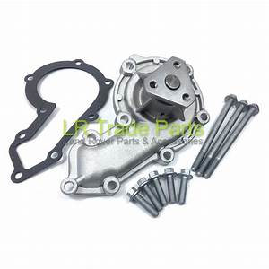 Land Rover Defender Discovery 1 300tdi Water Pump  Gasket
