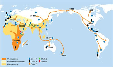map  early human migration patterns