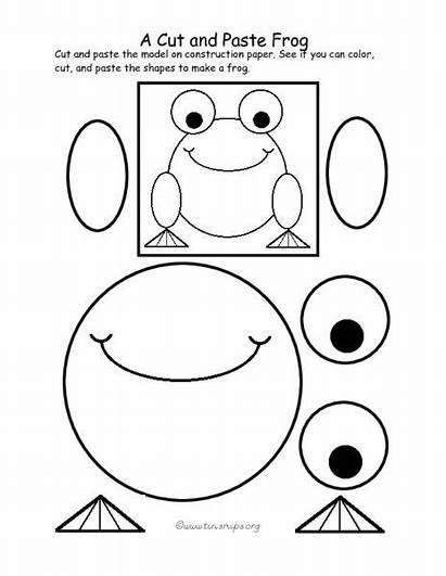 Paste Cut Worksheets Grade Pre Frog 1st