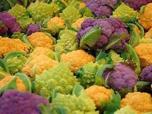 Blumenkohl Pflanzen Abstand : blumenkohl pflanzen pflegen und ernten die parzelle ~ Whattoseeinmadrid.com Haus und Dekorationen