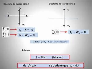 Ejemplos De Fuerzas En Sistemas En Equilibrio  Uvm