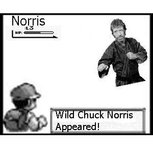 Chuck Norris Pokemon Memes - image 21820 chuck norris facts know your meme