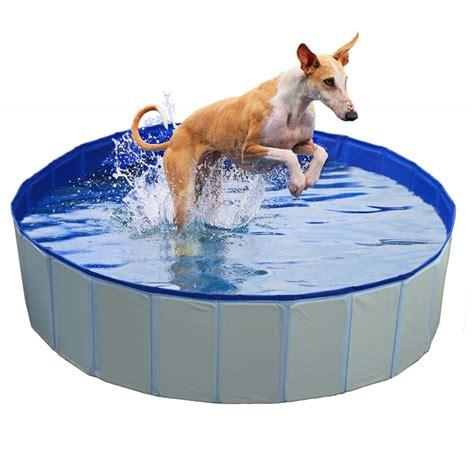 piscine pour chien bleu laroy