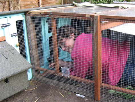 quail bird house plans pdf woodworking