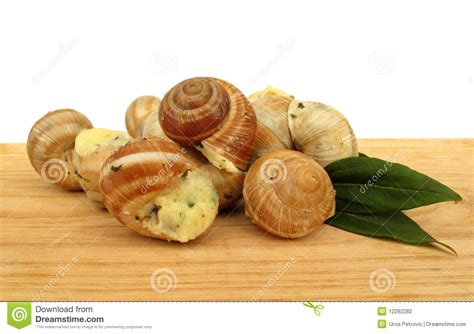 cuisine escargots snail escargot prepared as food stock photo image 12292282