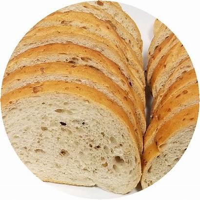 Bread Rye Winnipeg Buns Bagels Bakery Round