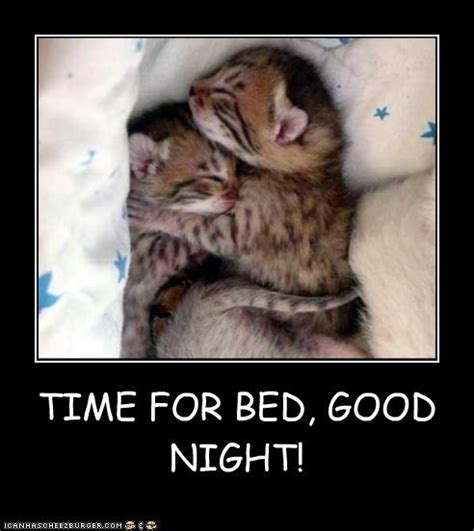 Goodnight Meme Cute - time for bed goodnight pictures photos and images for facebook tumblr pinterest and twitter