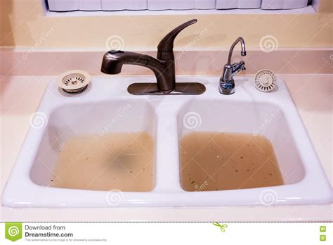 both kitchen sinks clogged clogged kitchen sink stock photo cartoondealer 79500750 4865