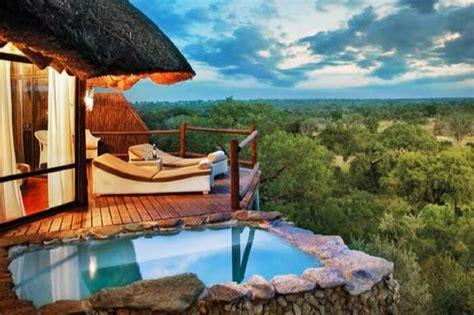 safari honeymoon  south africa kindling love   wild