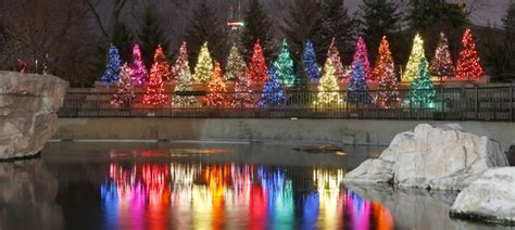 winter guide to chicago zoolights macy s millenium park