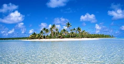 islas continentales  islas oceanicas biologia