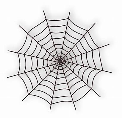 Spider Web Clip Clipart Clker Spiders Vector