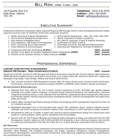 executive summary examples  word  google docs