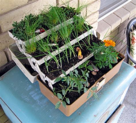 10 herb garden planter ideas