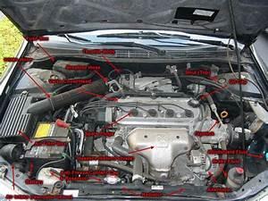 Car Anatomy Under Hood
