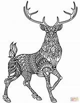 Coloring Deer Pages Zentangle Printable Drawing sketch template
