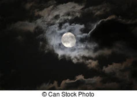 moonlight stock and 31 567 moonlight