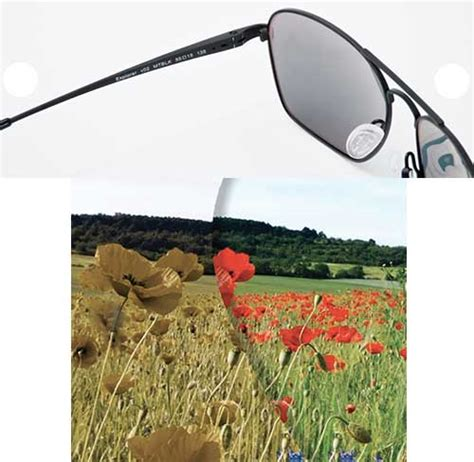 sunglasses for color blindness enchroma sunglasses give with color blindness