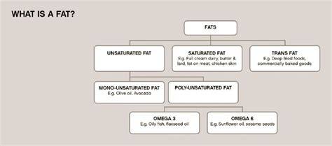 dna test for weight loss results functional osteopathy