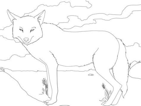 golden jackal coloring page super coloring