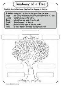 vowels worksheets for kindergarten 1000 images about classroom resources print it on cycles worksheets and