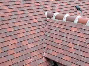 Tuile Mecanique Prix : tuile plate dameme toitures ~ Farleysfitness.com Idées de Décoration