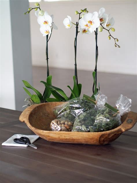 Potted Orchid In A Wooden Dough Bowl Decor Orchids