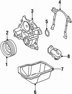 Oldsmobile Cutlass Ciera Mechanical Fuel Pump  Engine  Liter