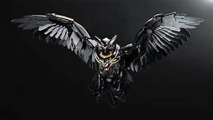 Dark Owl Wallpapers |