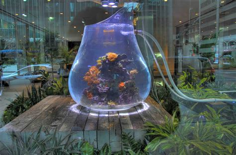 land and water aquarium an amazing installation the aquarium called land mind sallan s corner