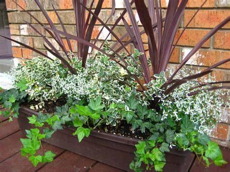 container garden ideas container gardening ideas quiet corner