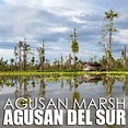 Agusan del Sur: Overnight with the Manobo community of ...