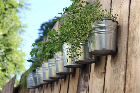 hanging herb garden diy hanging fence herb garden silly whims