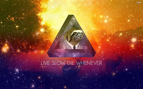 Meme Live Wallpaper - sloth wallpapers wallpaper cave