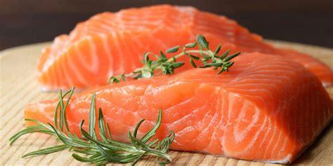 dogs eat salmon dog food genius