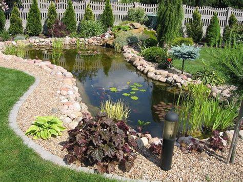 quel poisson pour bassin de jardin meilleures id 233 es cr 233 atives pour la conception de la maison