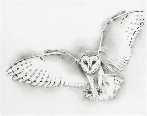 flying barn owl drawing barn owl sketch related keywords barn owl sketch