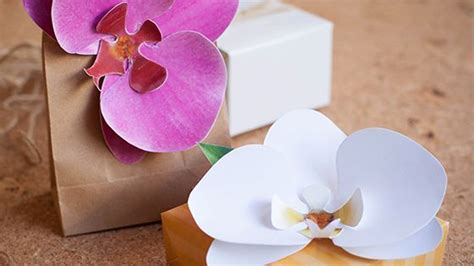 paper orchid printable template    pinterest