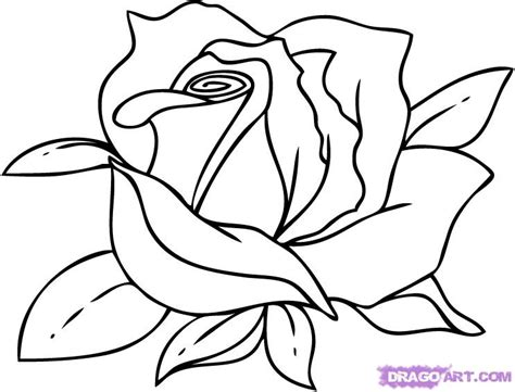 Black And White Flower Drawing Clipart Panda Free