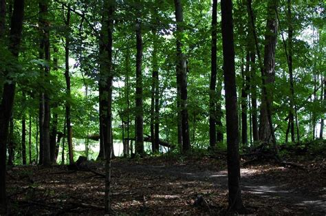 kurtz woods natural area ozaukee washington land trust