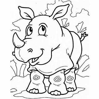Rhino Coloring Pages Preschool Animals Printable Kindergarten