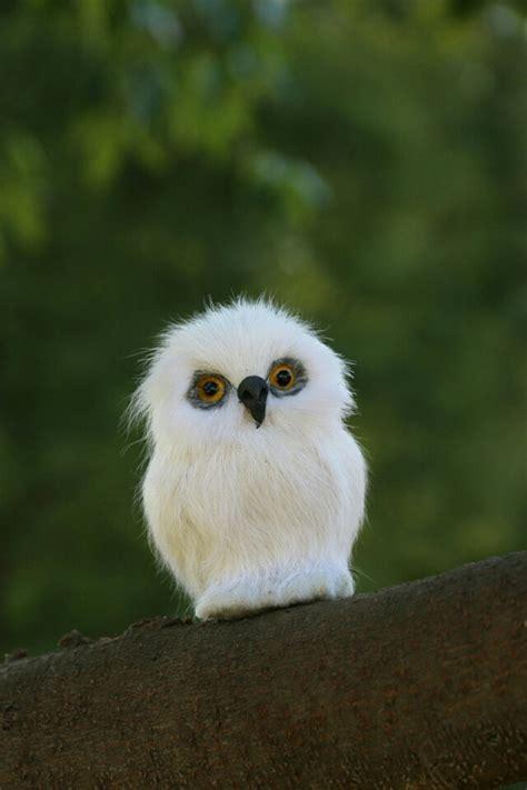 mini 7x5cm white owl polyethylene furs handicraft figurines home decoration gift